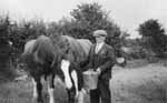 Anthony Brady with his horses
