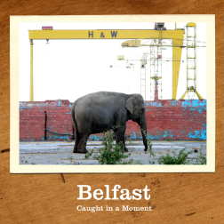 Belfast – Caught in a Moment